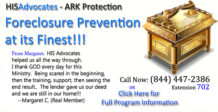 Mini-ARK Program